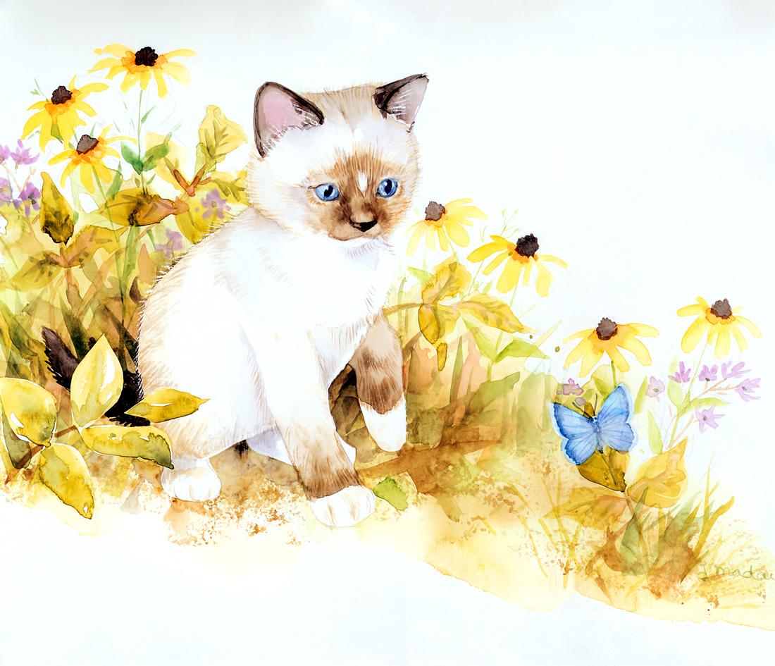 手绘猫咪年历