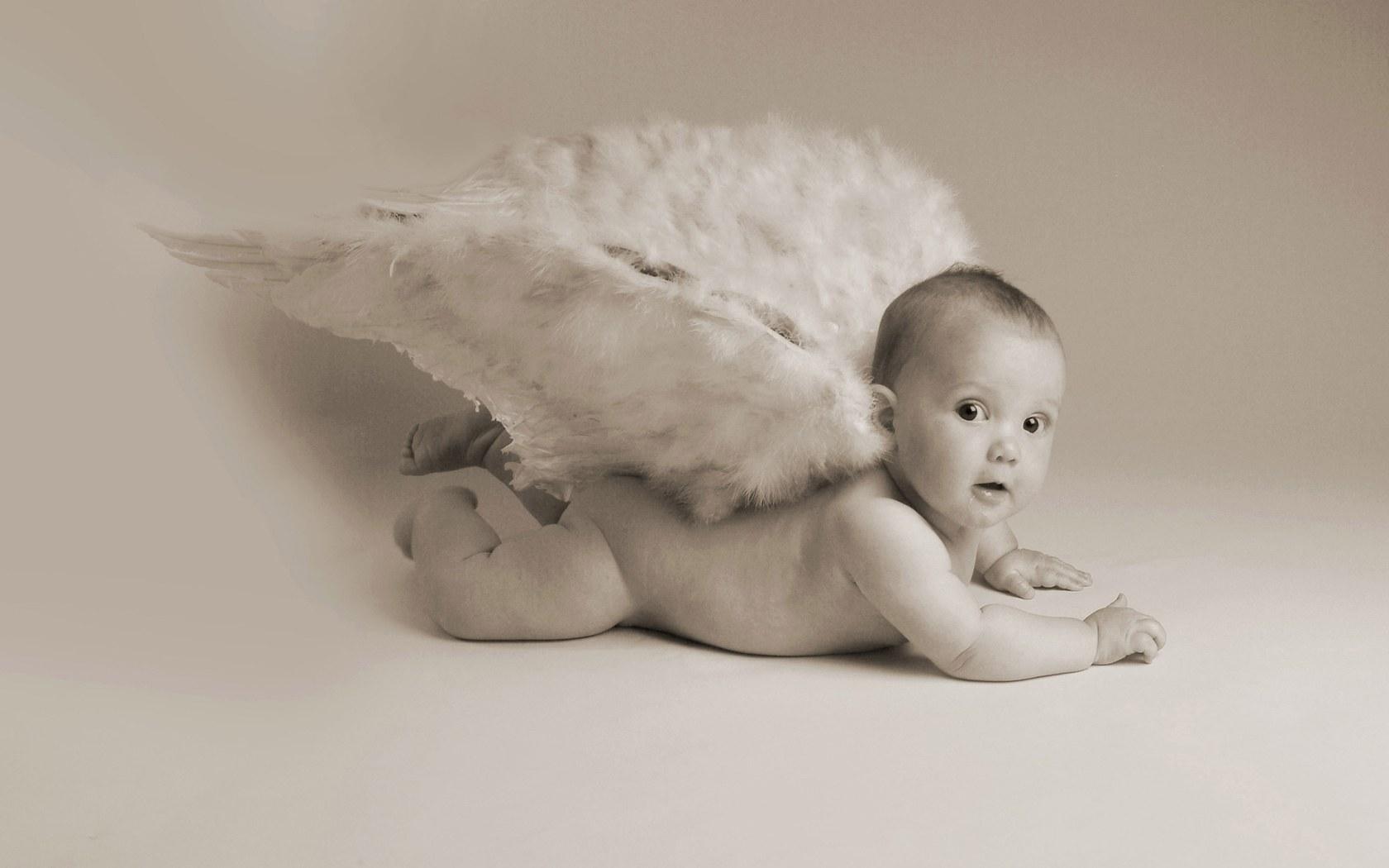 可爱萌 婴儿图片