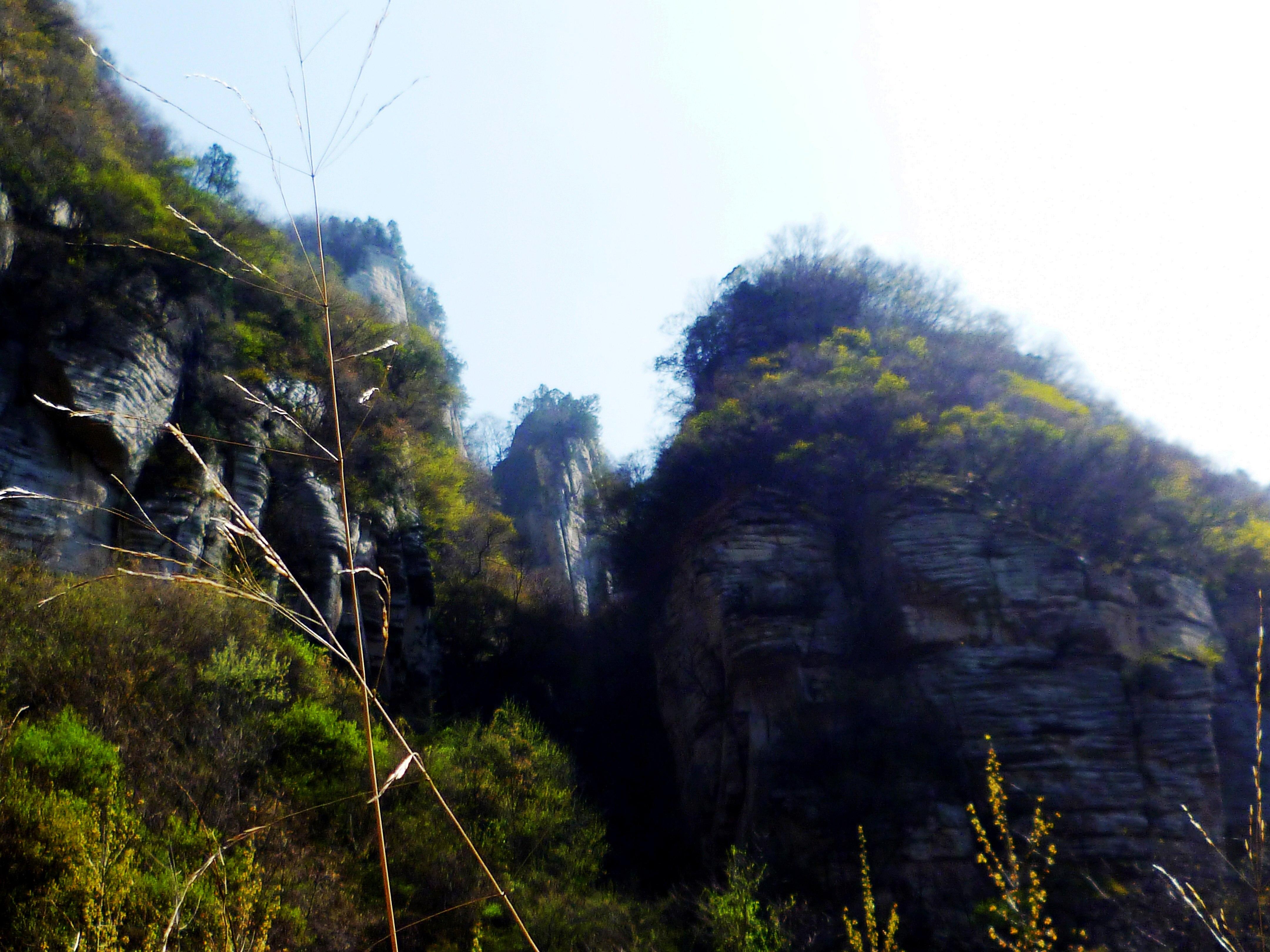 黄村中里社区风景