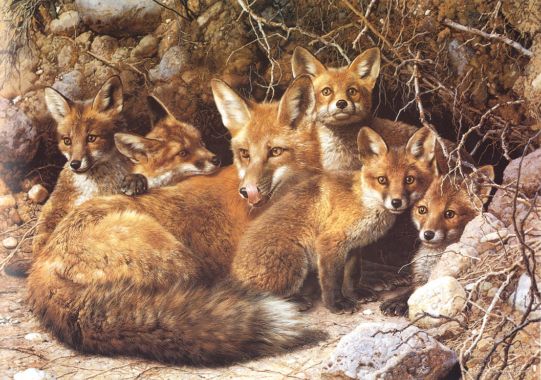 动物写实绘画展示