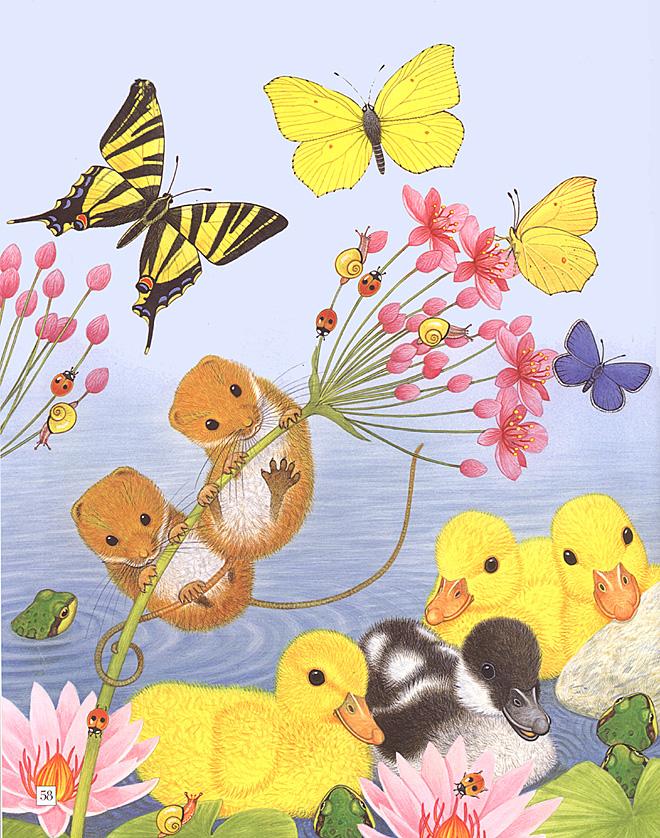 可爱的动物绘画 - 贴图专区