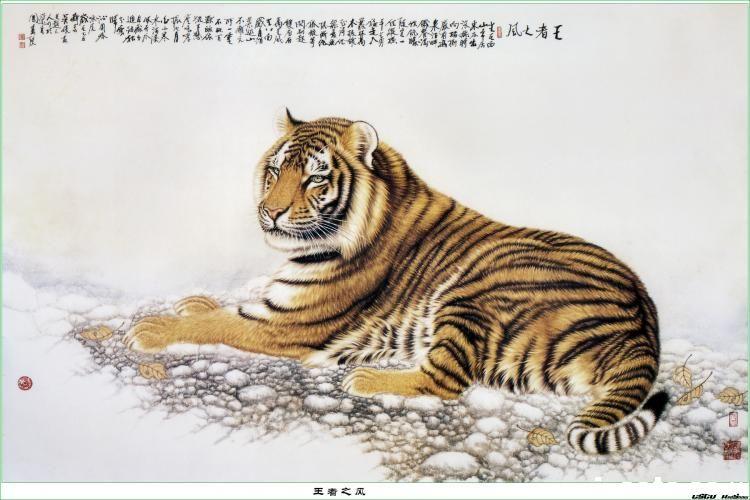 虎虎生威--吴峣工笔动物精选