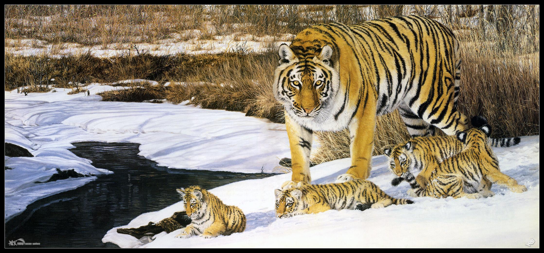 野生动物的绘画作品