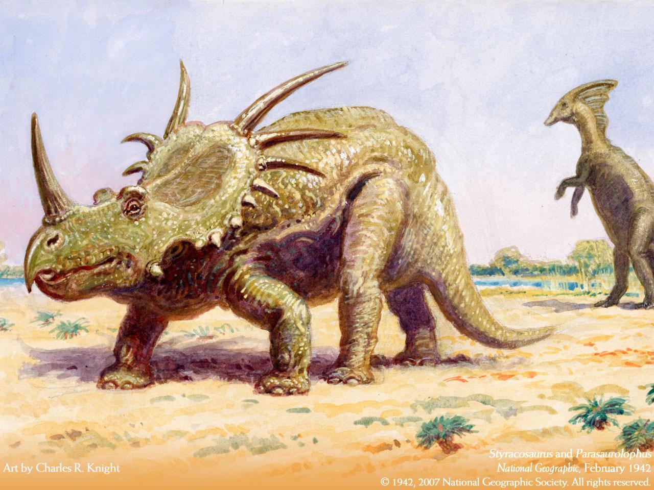 动物 恐龙 1280_960